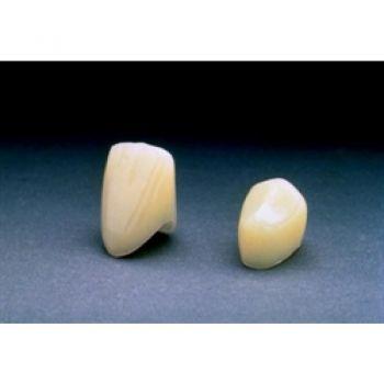 Polycarbonate Crowns – 3M